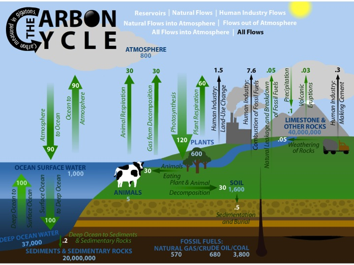 Image of Carbon cycle simulation from OSS 6-8