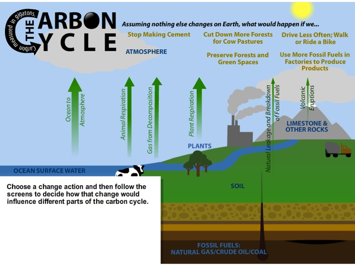 Image of carbon cycle change the flow simulation from session 3.10 OSS 6-8